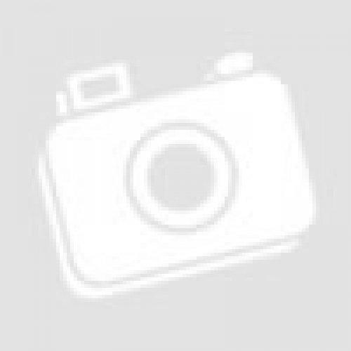 Каркас стола ученического «Отличник» 1-местного нерегулируемого гр.6
